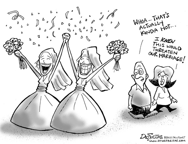 aganist gay marriage cartoon