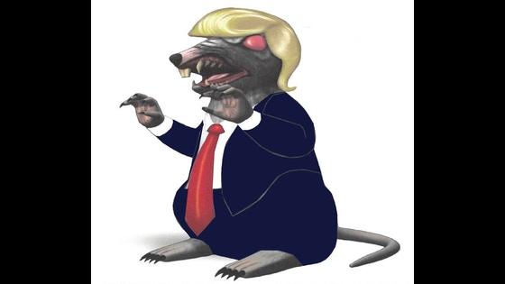 Trump-the-rat