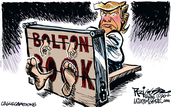john-bolton-trump-book